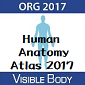 Visible Body Human Anatomy Atlas 2017