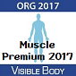 Visible Body Muscle Premium 2017