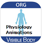 Visible Body Physiology Animations