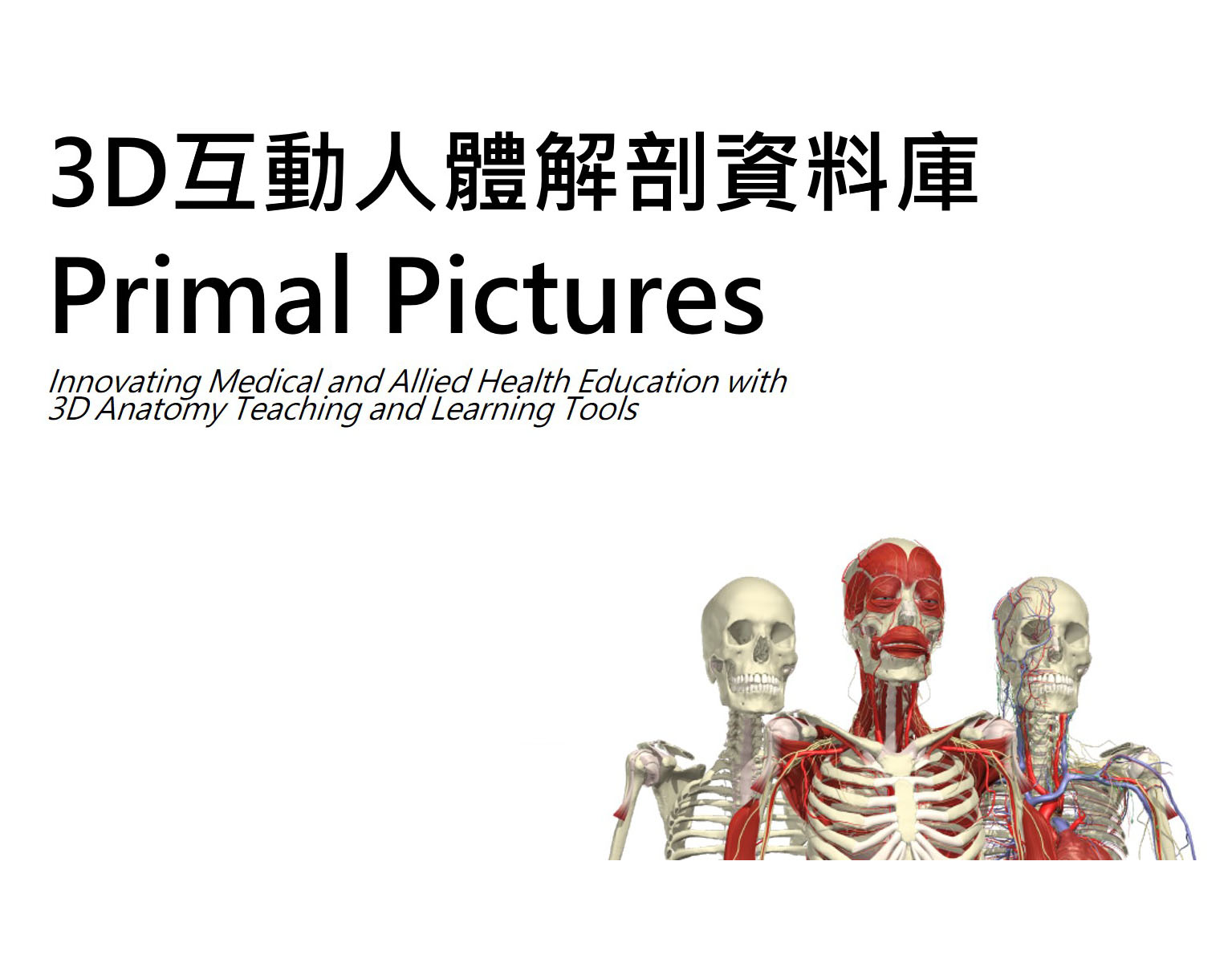 Primal Pictures 3D Real-time